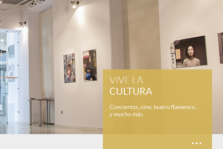 VIVE <br><strong>LA CULTURA</strong>