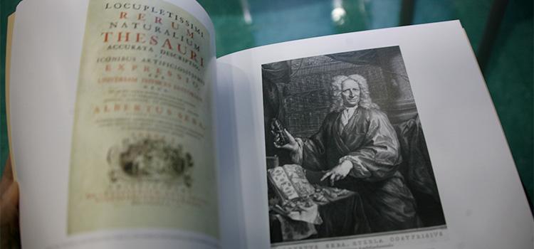 La UCA presenta el libro 'Sueño ilustrado, memoria del mundo' de Rosario Gestido, Ana Remón y José Joaquín Rodríguez
