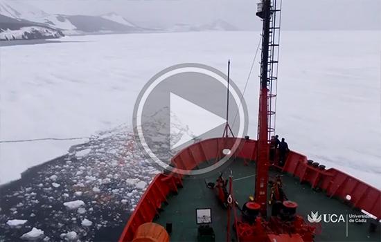 Investigadores UCA continúan su campaña en la Antártida