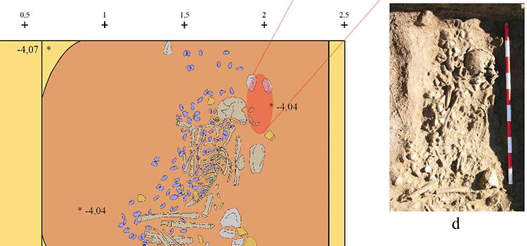 Investigadores de la UCA participan en un estudio arqueológico que refleja la importancia del medio marino en las sociedades neolíticas de la Bahía de Cádiz