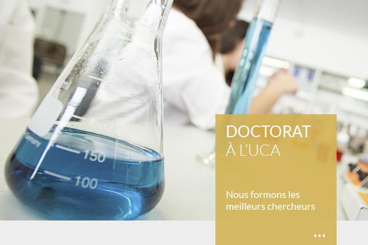 Doctorado (FR)