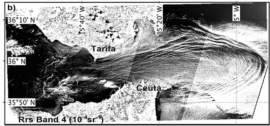 Científicos detectan por primera vez con imágenes de satélite las zonas de concentración de clorofila en el Estrecho de Gibraltar
