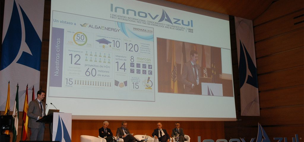 InnovAzul is positioned as the reference of innovation in the Blue Economy and concludes with hundreds of bilateral meetings
