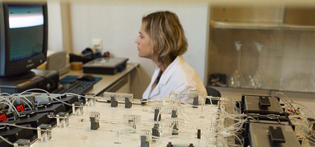 CEI·Mar financia 14 cursos de postgrado en las universidades de Cádiz, Granada, Málaga, Almería, Huelva y Tetuán
