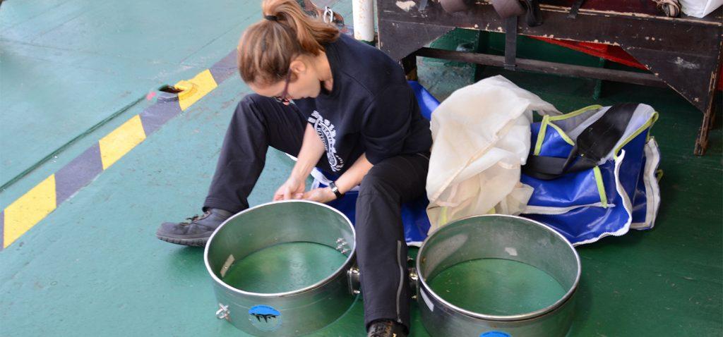 Una investigadora de la UCA y CEI·Mar establece una ratio entre plástico y plancton muy útil para establecer políticas medioambientales en los océanos