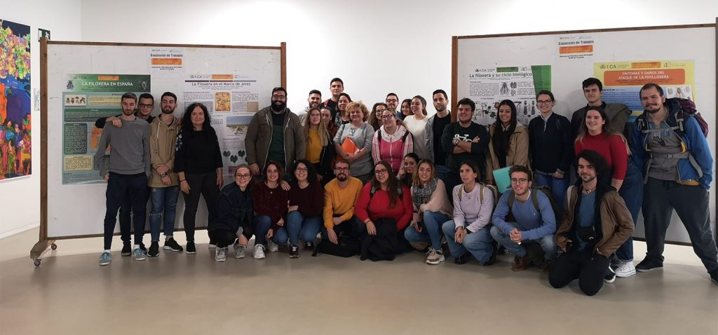 Alumnado de Enología pone en marcha una exposición del 125º aniversario de la filoxera en el Marco de Jerez