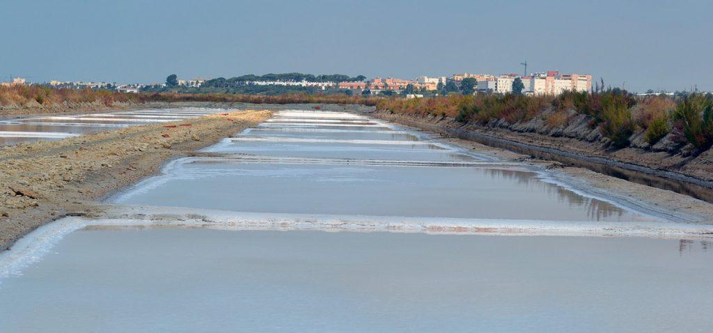 La Universidad de Cádiz pone a disposición de la ciudadanía una visita virtual por la salina 'La Esperanza'