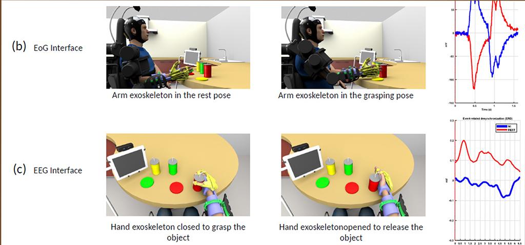 La combinación del control cerebral y ocular en brazos robóticos reduce el estrés de los usuarios