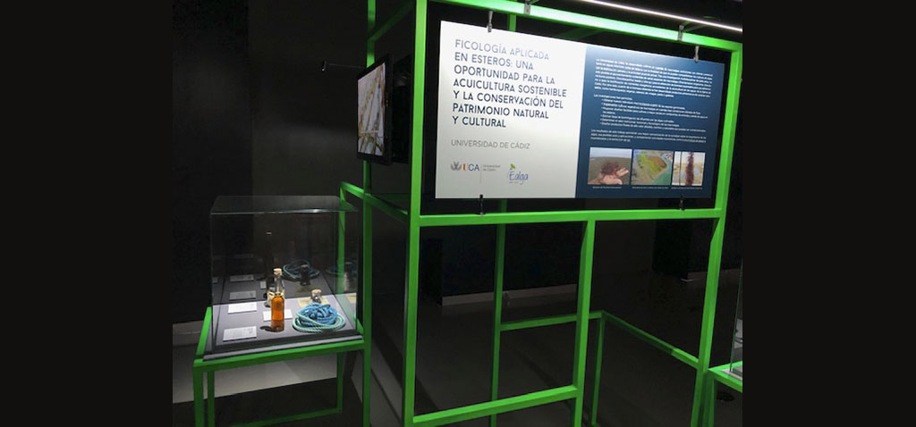 La UCA participa en la tercera edición de la exposición 'Campus Vivo' en el Museo Nacional de Ciencia y Tecnología