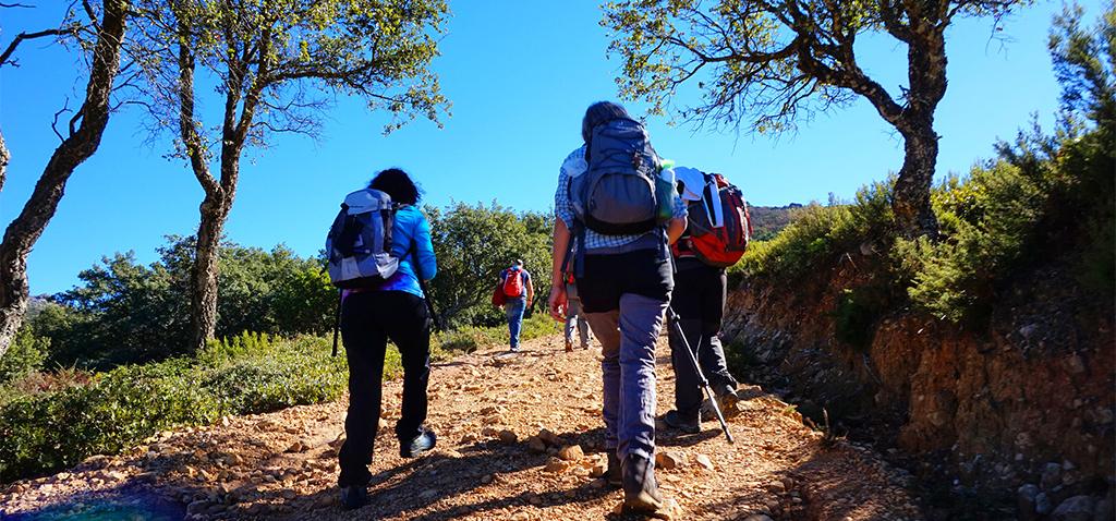 La UCA celebra dos rutas guiadas por Cádiz y Puerto Real y varios talleres divulgativos en el Parque Natural de Los Toruños