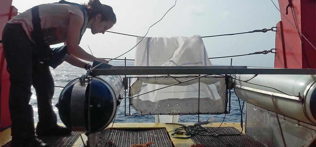 Científicos de UCA y CEI·Mar desarrollan una guía para clasificar los plásticos oceánicos por su color