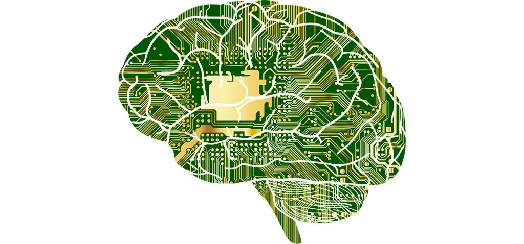 Investigadores de la UCA y la US hallan una molécula que ayuda a la regeneración de neuronas y mejora la memoria y el aprendizaje