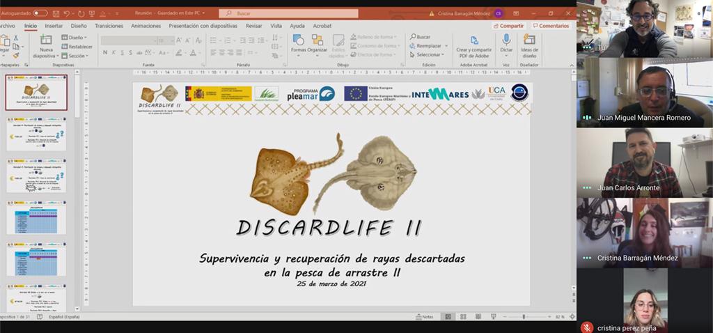 La UCA organiza la reunión inicial del proyecto 'DISCARDLIFE II' para recuperación de las rayas descartadas en la pesca de arrastre
