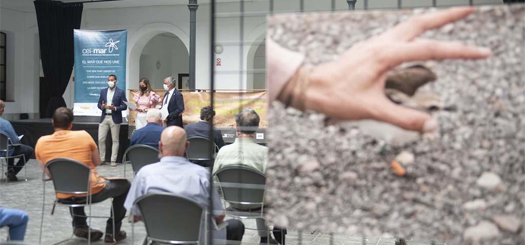 El edificio Constitución 1812 de la UCA acoge la exposición itinerante del CEI·Mar sobre el chorlitejo patinegro